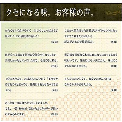 長岡京小倉山荘『嵯峨乃焼化粧箱(大)』