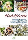 Herbstfrüchte: Holunder, Hagebutte, Schlehe und Esskastanie