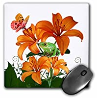 """3dローズ"""" Oriental Lilies With A Green Tree Frog and Butterfly Garden""""マット仕上げマウスパッド–8x 8""""–MP 212405_ 1"""