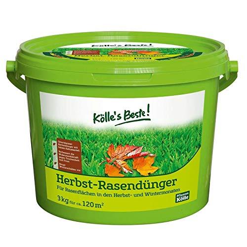 Kölle's Beste! Herbst Rasendünger für einen geschützten Rasen im Winter, praktisches Granulat, für alle Rasensorten geeignet, zur Düngung im Herbst, 3 kg 3 kg