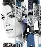 Greys Anatomy Season 16 Poster auf