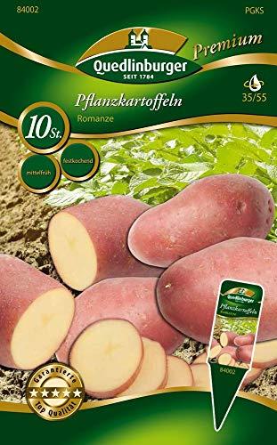 Quedlinburger 84002 Kartoffel Romanze (10 Stück) (Pflanzkartoffeln)