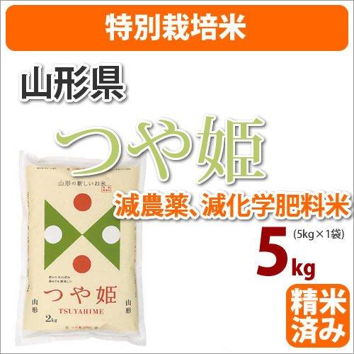 戸塚正商店 特別栽培米 山形県産「つや姫」5kg 27年産 精米度:白米 無洗米にしない