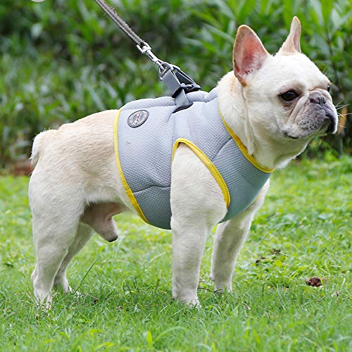 Hifrenchies Dogs Cooling Vest Harness for Outdoor Walking-French Bulldog Summer Cooler vast Jacket -Safety Sun-Proof Pet Coat Vest Harness for Frenchie(L)