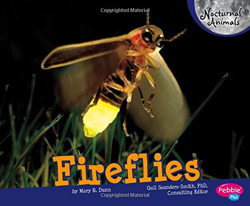 Compare Textbook Prices for Fireflies Nocturnal Animals  ISBN 9781429671200 by Dunn, Mary R.