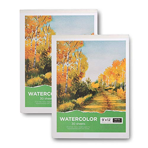 "Watercolor Pad, 9x12"" Watercolor Paper Pad - 2-Pack, 60 Sheets, 140 Lb / 300 GSM Heavy Weight Paper - Acid Free Cold Pressed Paper Sketchbook - Perfect for Painting Drawing, Wet & Dry Media"