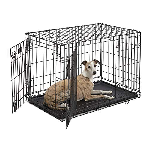 Dog Crate 1536DDU | MidWest ICrate 36 Inches Double Door Folding Metal Dog Crate w/ Divider Panel Floor Protecting Feet amp Leak Proof Dog Tray | Intermediate Dog Breed Black