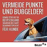 BELISY Hunde-Sicherheits-Gurt fürs Auto – höchste Sicherheit für Dich und Deinen Hund – mit besonders elastischer Ruckdämpfung für maximalen Komfort – passend für alle Hunderassen – höchste Markenqualität - 7