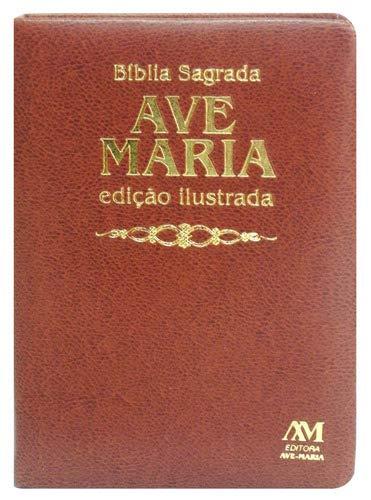 Bíblia edição ilustrada luxo - média - marrom: Ilustrada - Média - Marrom
