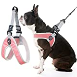 Gooby Dog Harness - Pink, Large - Simple Step-in Harness III Small Dog Harness Scratch Resistant - On The Go Breathable Inner Mesh Harness for Small Dogs or Cat Harness for Indoor and Outdoor Use