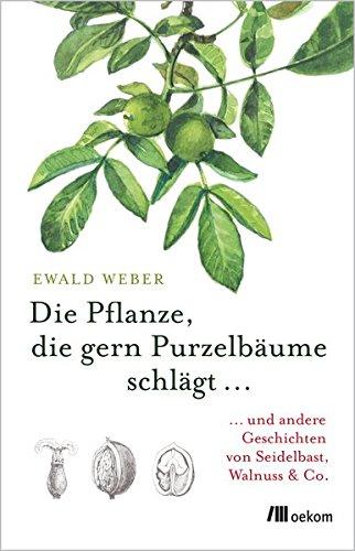 Die Pflanze, die gern Purzelbäume schlägt …: …und andere Geschichten von Seidelbast, Walnuss & Co.