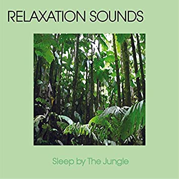 Sleep By The Jungle