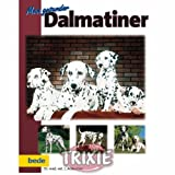 Mein gesunder Dalmatiner