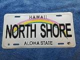Inga Placa de matrícula Hawaii de 15,2 x 30,5 cm, arco iris Aloha State North Shore Surf