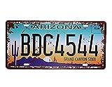 Shinewe Arizona BDC4544Vintage Nummernschild Metall