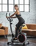 Christopeit AL 1 - Bicicletas estáticas y de spinning para...