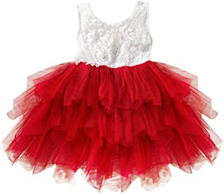 Little Girl Lace Flower Tutu Dress Backless Princess Wedding Bridesmaid Formal