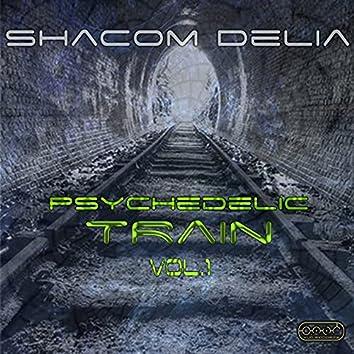 Psychedelic Train, Vol.1