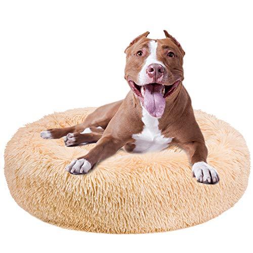 HAWSON Dog Cat Bed, Soft Plush Round Thick Pet Cushion Bed with Laundry Bag, Non-slip Warm Pet Sofa Bed Cushion Small Dogs, Pet Cat Bed for Cats & Dogs Medium, Machine Washable, Khaki, 31inch