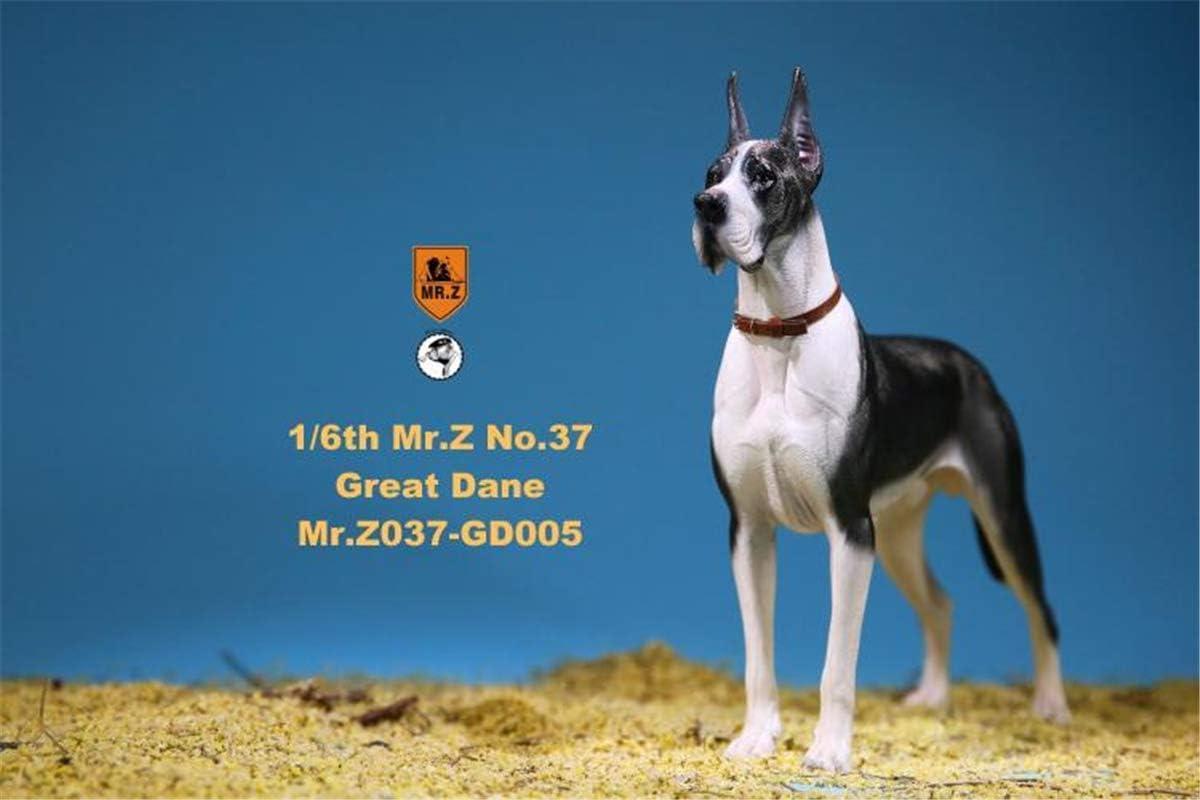 HUAXUE 1 6 German Great Ranking TOP8 Dane familiar Dog Lupus Figure Canis 5 popular Pet
