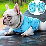 XXDYF Cane Carino Maglietta dei Vestiti, Maglietta Stampata per Cani di Piccola Taglia, Vestiti del Cane di Cotone per Chihuahua Bulldog,L