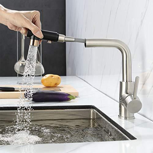 Faulkatze Küchenarmatur mit 2 Strahlarten Brause Ausziehbar Wasserhahn Küche Armatur Edelstahl Mischbatterie Spültischarmatur Einhebelmischer (2 Schalter)