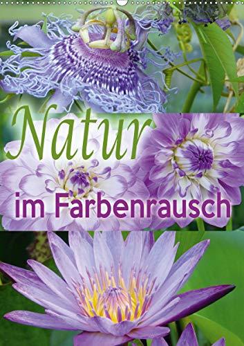 Natur im Farbenrausch (Wandkalender 2021 DIN A2 hoch)
