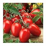 Organic Roma Tomato Seeds, 300+ Premium Heirloom Seeds!, 1 Selling...