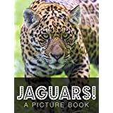 Jaguars! A Picture Book (English Edition)