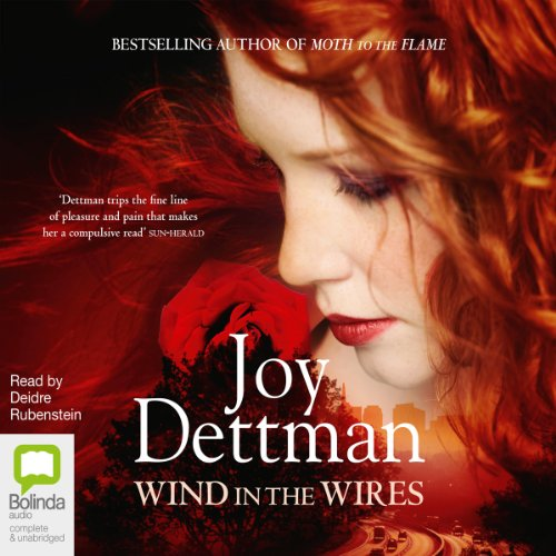Wind in the Wires audiobook cover art