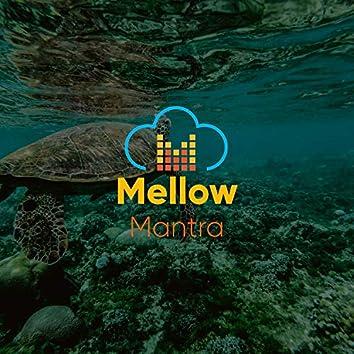 # 1 Album: Mellow Mantra