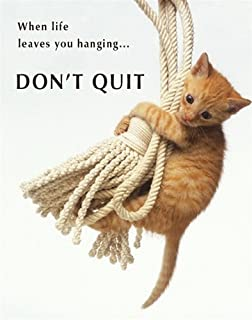 Don't Quit Kitten Inspirational Animal Photography Poster Print (Decorative) 16 by 20