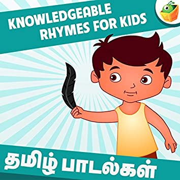 Knowledgeable Rhymes for Kids