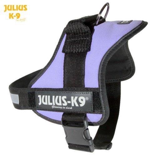 Julius-K9 Powerharness, Baby 1, Purple