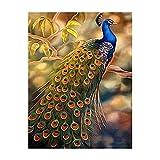 Xofjje Pintar por numeros para Adultos La_Paisaje Animal Pavo Real_Cuadro de Pintura por números Adultos_Lienzo Dibujado con numeros para Pintar con Pinceles y Colores Brillantes_40x50cm_Sin Marco