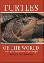 Best turtles of the world Reviews