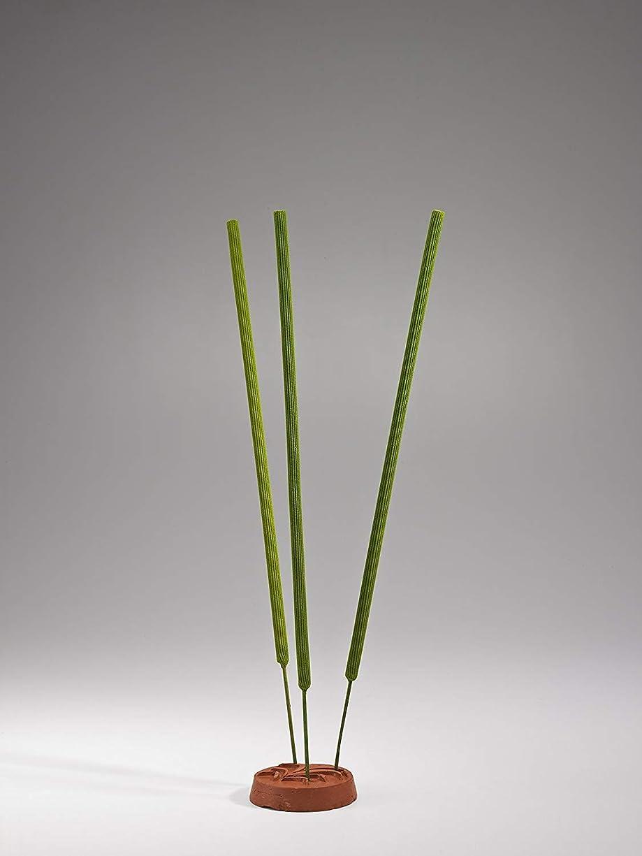 禁止する大学援助Iris Amogha Citronella Garden Incense