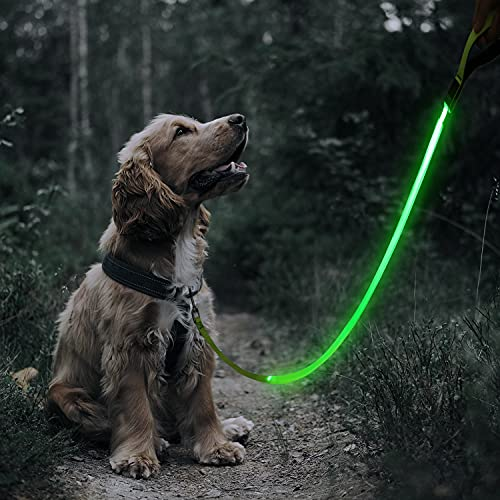 KAUHSJ LED Dog Leash -120 cm USB Rechargeable Reflective Night Safety Pet Leash USB Rechargeable Webbing for Large Medium Small Dog Makes Your Dog Visible (47 inches, Green)