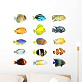 Wallmonkeys FOT-30243790-24 WM195682 Collection of a Tropical Fish Peel and Stick Wall Decals H x 24 in W, 24' 24' W-Medium