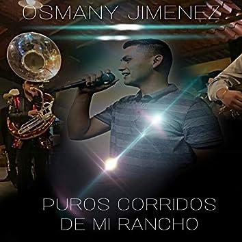 Puros Corridos De Mi Rancho (Live)