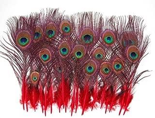 25 Pcs Peacock MINI Tail Feathers 2