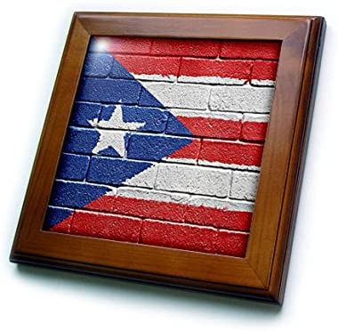 3dRose ft_156970_1 National Flag of Puerto Rico Painted onto a Brick Wall Rican Framed Tile, 8 x 8