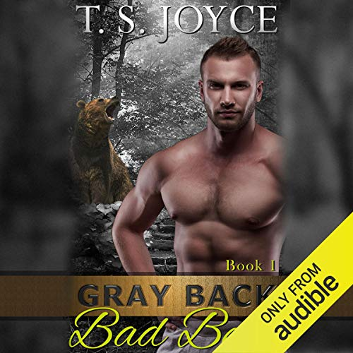 Gray Back Bad Bear cover art