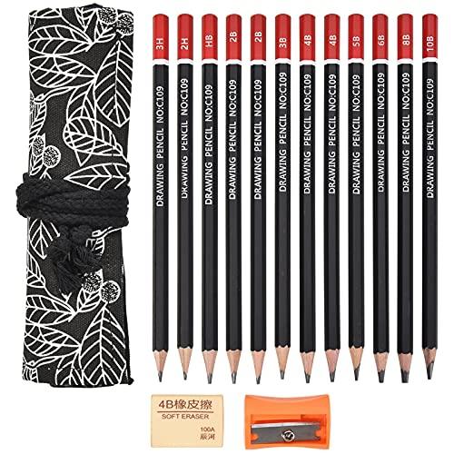 Bleistift Set, 12 er Pack Zeichenstifte Skizzierstifte Set mit Anspitzer Radiergummi, Härtegrad 10B, 8B, 6B, 5B, 2x4B, 3B, 2x2B, HB, 2H, 3H, Künstlerstift für Kinder und Erwachsene Anfänger