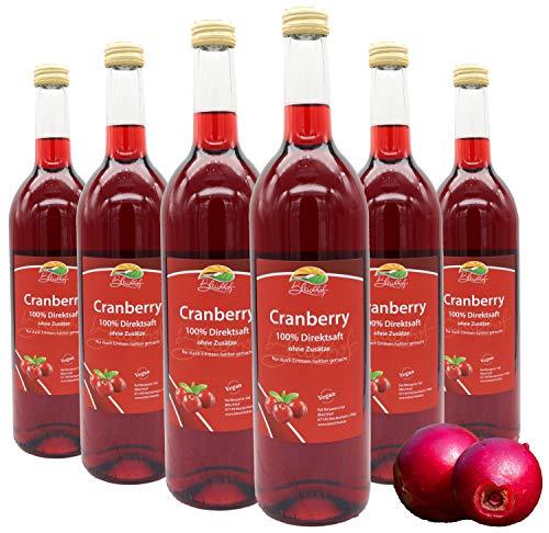 Bleichhof Cranberry-Saft (100% vegan) - zuckerfrei & rein im Geschmack » komplett frei von Zusätzen« Cranberry-Direktsaft ohne Zucker- Premium - Qualität vom Familienbetrieb (6x0,72L)