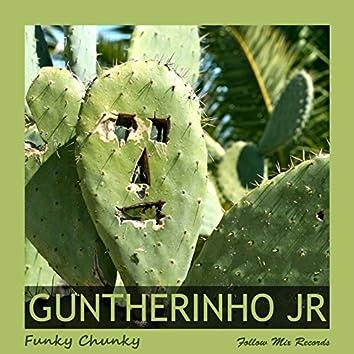 Funky Chunky (feat. Dan S, Daniel Gunther) [Follow Mix Remaster]