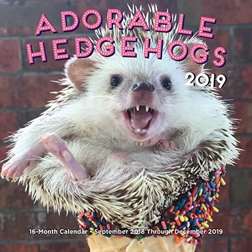 Adorable Hedgehogs Mini 2019: 16-Month Calendar - September 2018 through December 2019 (Calendars 2019)