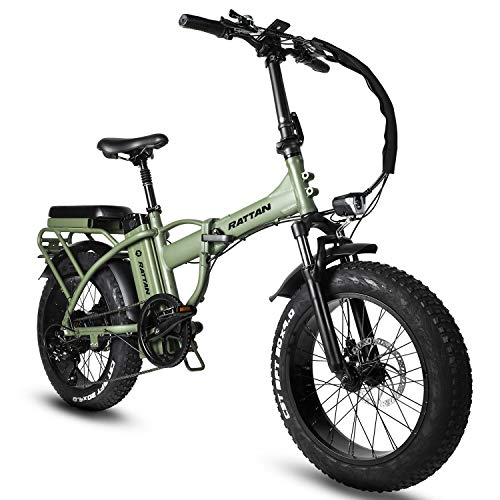 R Rattan 48V 500W/750W 3.0/4.0 Fat Tire Electric Bike
