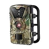 Caméra de Chasse LESHP Caméra de Surveillance Étanche 24 LEDs 12MP...