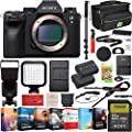 Sony a9 II Full Frame Mirrorless Interchangeable Lens Camera Body ILCE-9M2 Including Deco Gear Case Wireless Flash 64GB Memory Card Extra Battery Monopod Power Editing Bundle